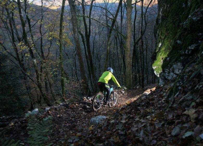 Mont Poupet Bike Park