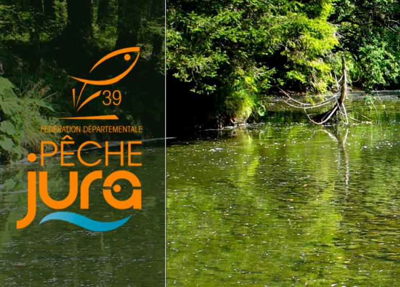 Pêchez dans le Jura