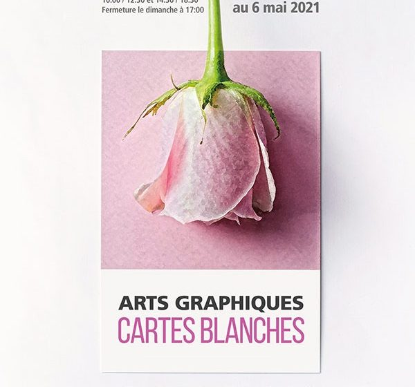 Le bocal : Art Graphique – Cartes Blanches